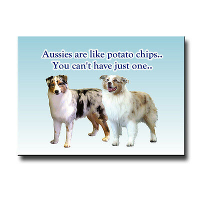 AUSTRALIAN SHEPHERD DOG Can't Have Just One MAGNET