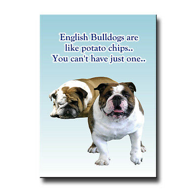 ENGLISH BULLDOG Can't Have Just One FRIDGE MAGNET Dog