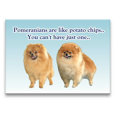 POMERANIAN Can't Have Just One FRIDGE MAGNET New DOG