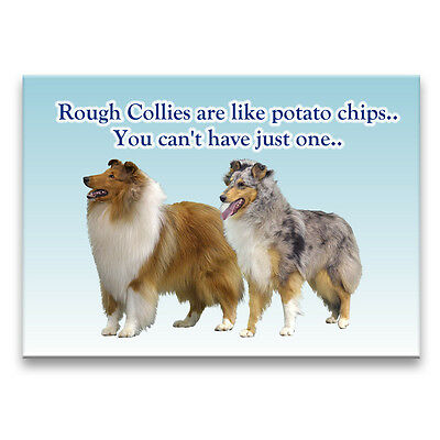 ROUGH COLLIE Can't Have Just One FRIDGE MAGNET