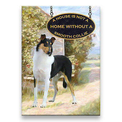 SMOOTH COLLIE a House Is Not A Home FRIDGE MAGNET No 2