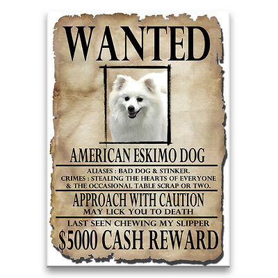 AMERICAN ESKIMO DOG Wanted Poster FRIDGE MAGNET New DOG