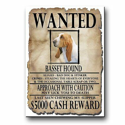 BASSET HOUND Wanted Poster FRIDGE MAGNET No 1 DOG Funny