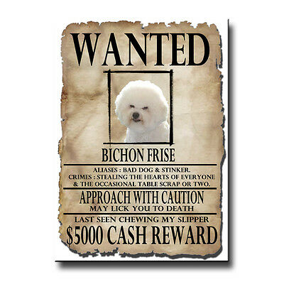 BICHON FRISE Wanted Poster FRIDGE MAGNET New DOG