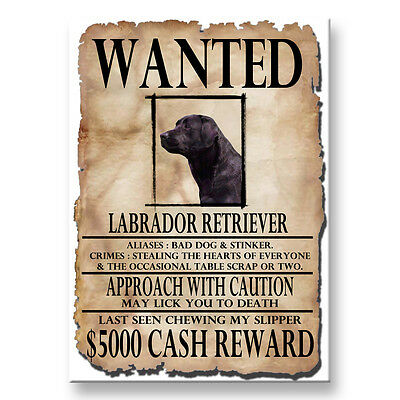 BLACK LABRADOR Wanted Poster FRIDGE MAGNET New DOG