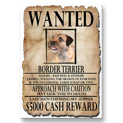 BORDER TERRIER Wanted Poster FRIDGE MAGNET New DOG