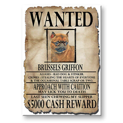 BRUSSELS GRIFFON Wanted Poster FRIDGE MAGNET No 1 DOG