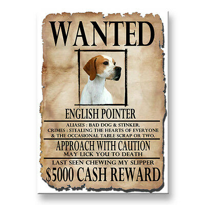 ENGLISH POINTER Wanted Poster FRIDGE MAGNET No 2 DOG