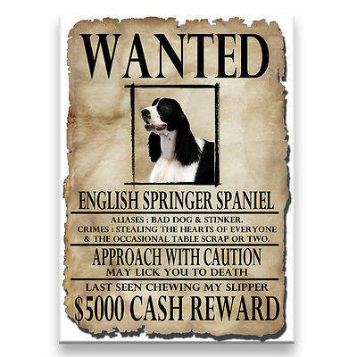 ENGLISH SPRINGER Wanted Poster FRIDGE MAGNET No 1