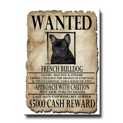 FRENCH BULLDOG Wanted Poster FRIDGE MAGNET No 2 DOG