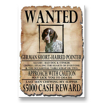 GERMAN S/H POINTER Wanted Poster FRIDGE MAGNET New DOG