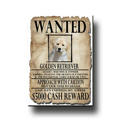 GOLDEN RETRIEVER Wanted Poster FRIDGE MAGNET New DOG