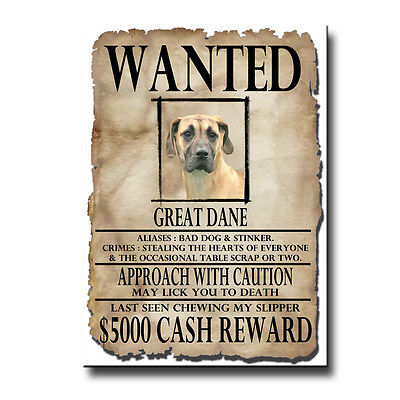 GREAT DANE Wanted Poster FRIDGE MAGNET No 5 Uncropped