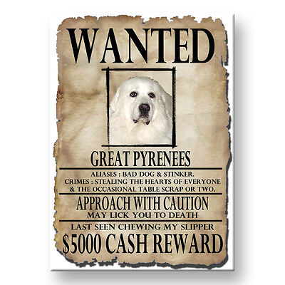 GREAT PYRENEES Wanted Poster FRIDGE MAGNET New DOG
