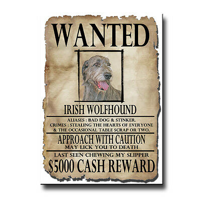 IRISH WOLFHOUND Wanted Poster FRIDGE MAGNET New DOG
