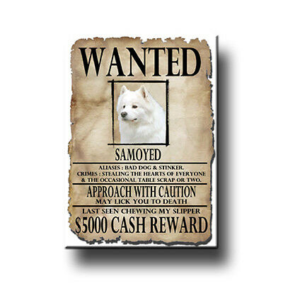 SAMOYED Wanted Poster FRIDGE MAGNET New DOG Funny