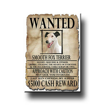 SMOOTH FOX TERRIER Wanted Poster FRIDGE MAGNET New DOG