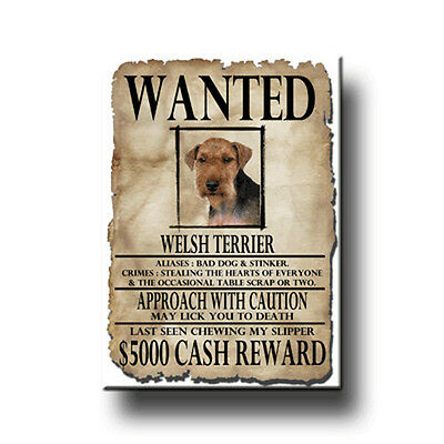 WELSH TERRIER Wanted Poster FRIDGE MAGNET New DOG Funny