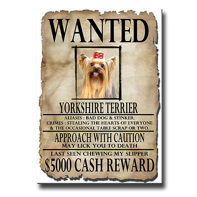 YORKSHIRE TERRIER Wanted Poster FRIDGE MAGNET Yorkie