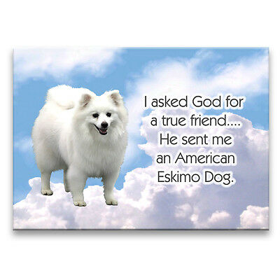 AMERICAN ESKIMO DOG True Friend From God FRIDGE MAGNET