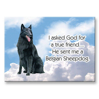 BELGIAN SHEEPDOG True Friend From God FRIDGE MAGNET Dog
