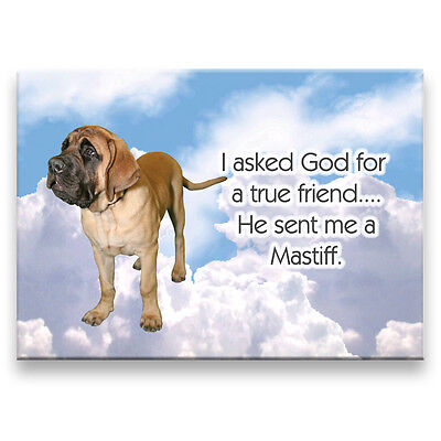MASTIFF True Friend From God FRIDGE MAGNET No 1 DOG