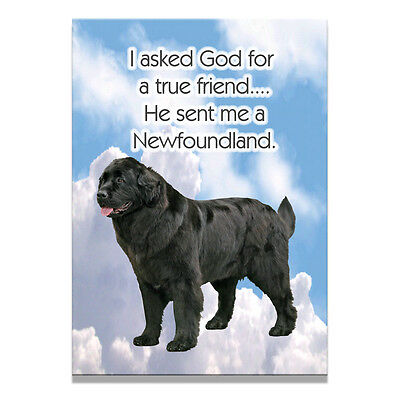NEWFOUNDLAND True Friend From God FRIDGE MAGNET No 2