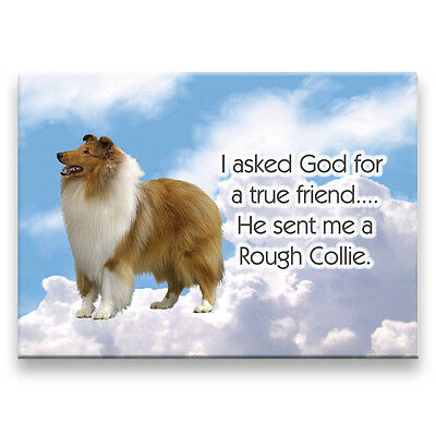 ROUGH COLLIE True Friend From God FRIDGE MAGNET No 1