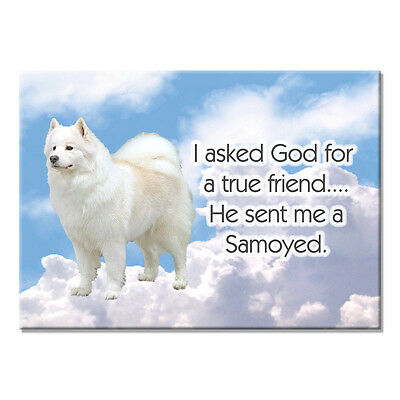 SAMOYED True Friend From God FRIDGE MAGNET New DOG