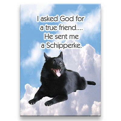 SCHIPPERKE True Friend From God FRIDGE MAGNET New DOG