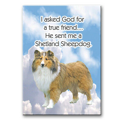 SHETLAND SHEEPDOG True Friend From God FRIDGE MAGNET No 1