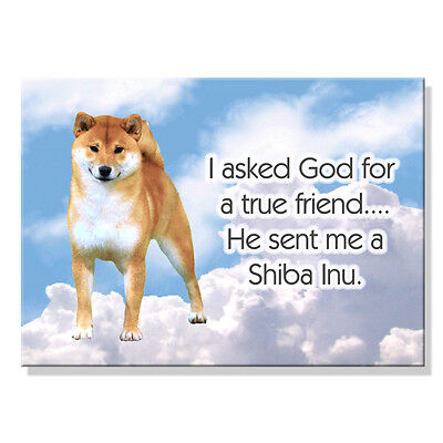 SHIBA INU True Friend From God FRIDGE MAGNET No 1 New