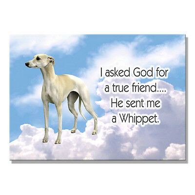 WHIPPET True Friend From God FRIDGE MAGNET New DOG