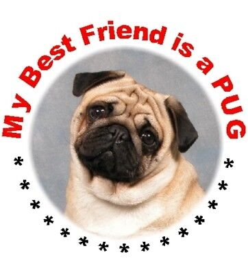 Auto combined postage Pug Key Ring No 2 By Starprint