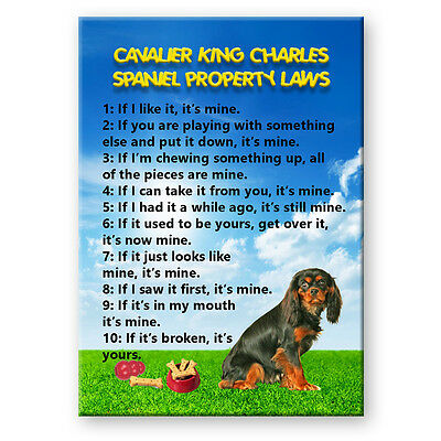 CAVALIER KING CHARLES SPANIEL Property Laws FRIDGE MAGNET No 3