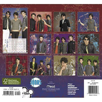 JONAS BROTHERS 2010 16 Month Wall Calendar or Posters