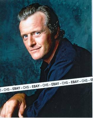 RUTGER HAUER NICE COLOR 8x10 PHOTO