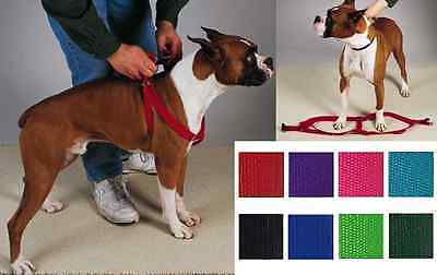 STEP IN HARNESS Dog Pet Walk New Adjustable Nylon Easy - 8 Colors -Guardian Gear