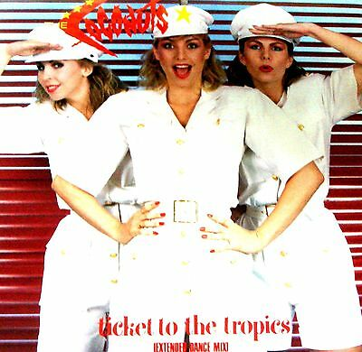 """12"""" - The Coconuts - Ticket To The Tropics (POP) MINT, STOCK STORE COPY, LISTEN"""