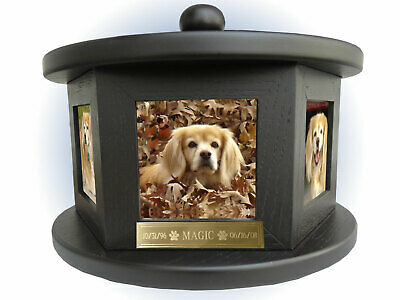 6 Photo Rotating Pet Cremation Urn - Up To 100 Lbs