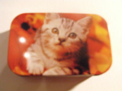 1oz Metal Hinged TOBACCO TIN KITTEN Picture