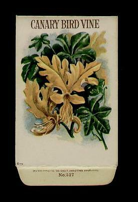 1918 CANARY BIRD VINE GALLOWAY LITHO CO. SEED PACKET - ANTIQUE