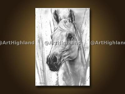 New Original Hand Painted Oil Paintings Painting on Canvas Horse Portrait Signed