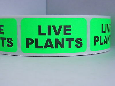 LIVE PLANTS  1x2 Warning Sticker Label green fluorescent bkgd 500/rl