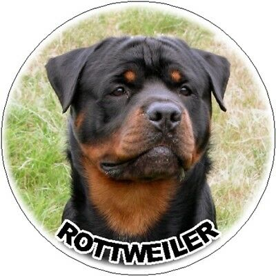 2 Rottweiler Car Stickers Designed By Starprint