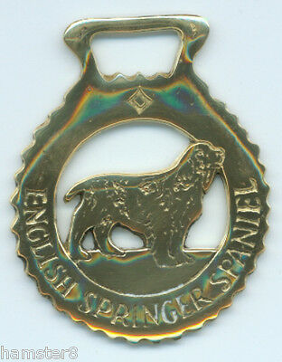 ENGLISH SPRINGER SPANIEL Horse brass  (N500)