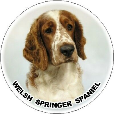 Starprint 2 English Springer Spaniel No4 Car Stickers