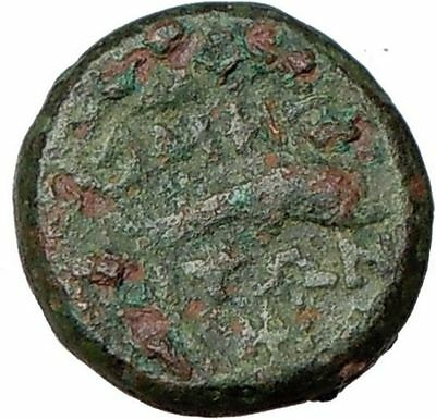 Amphipolis Macedonia 200BC Ancient Rare Greek Coin Dolphin River God i24071
