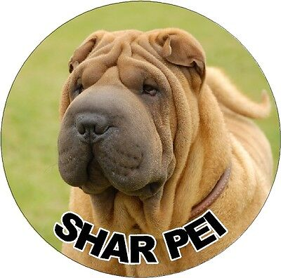 2 Shar Pei Dog Car Stickers By Starprint - Visit our Shop