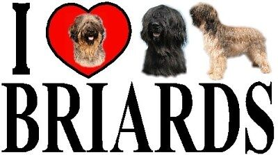 I LOVE BRIARDS Car Sticker By Starprint - Featuring the Briard